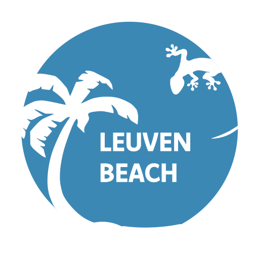 Leuven Beach